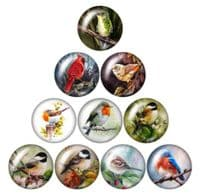 Bird Glass Cabochon Dome Circular Needle Minder